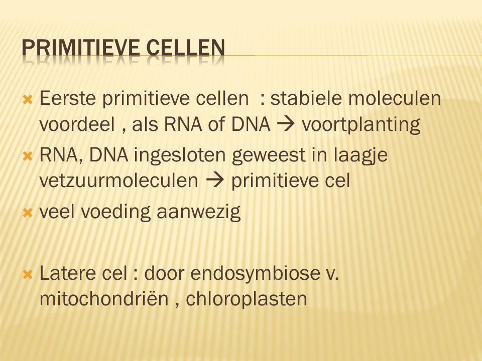 Primitieve cellen Eerste primitieve cellen : stabiele moleculen voordeel , als RNA of DNA  voortplanting.