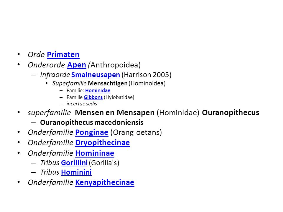 Onderorde Apen (Anthropoidea)