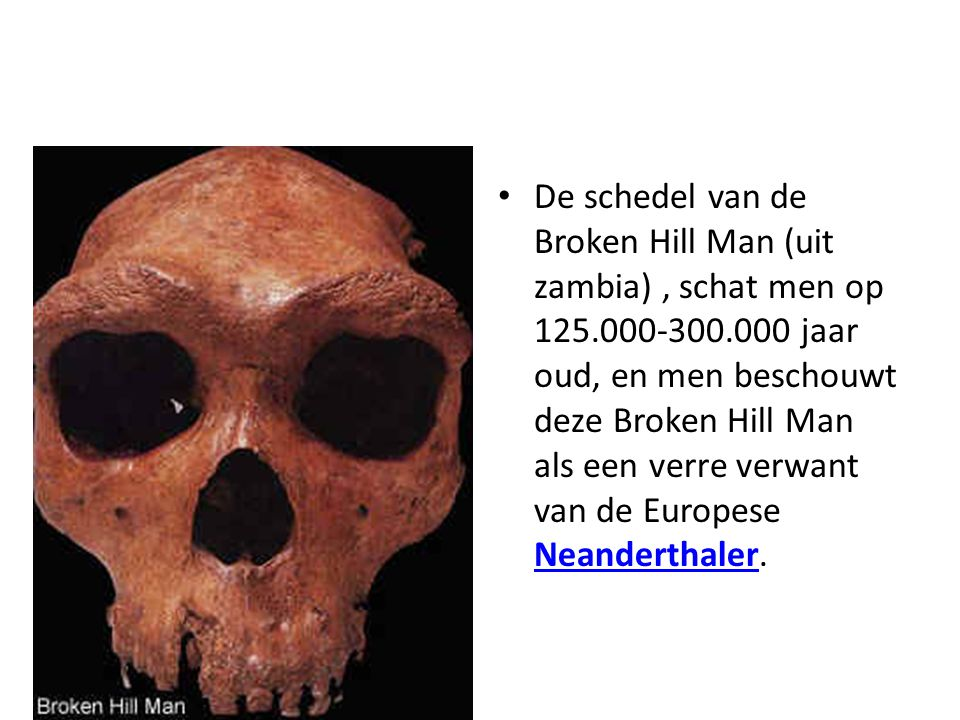 De schedel van de Broken Hill Man (uit zambia) , schat men op 125