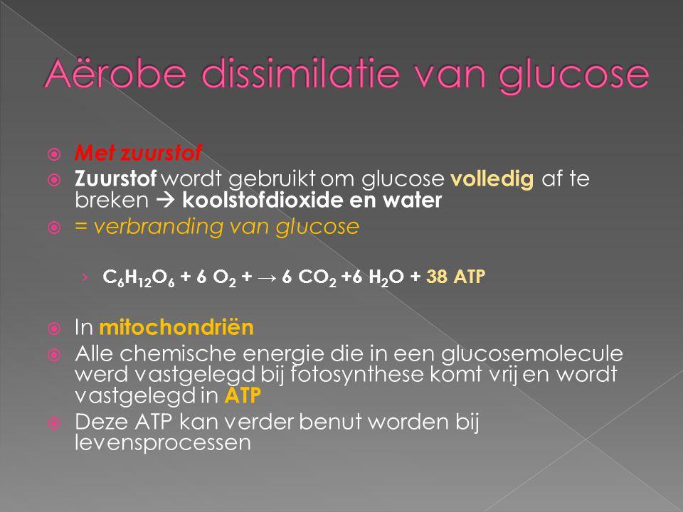 Aërobe dissimilatie van glucose