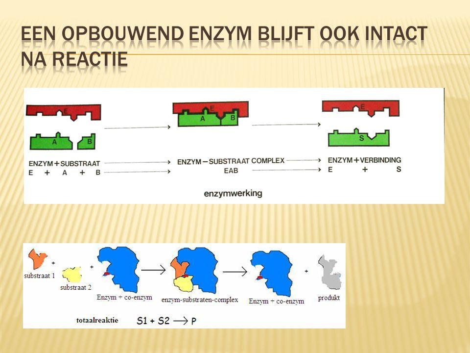 een opbouwend enzym blijft ook intact na reactie