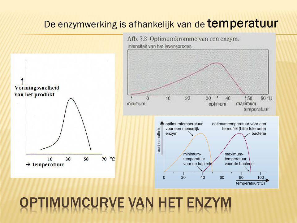 Optimumcurve van het enzym