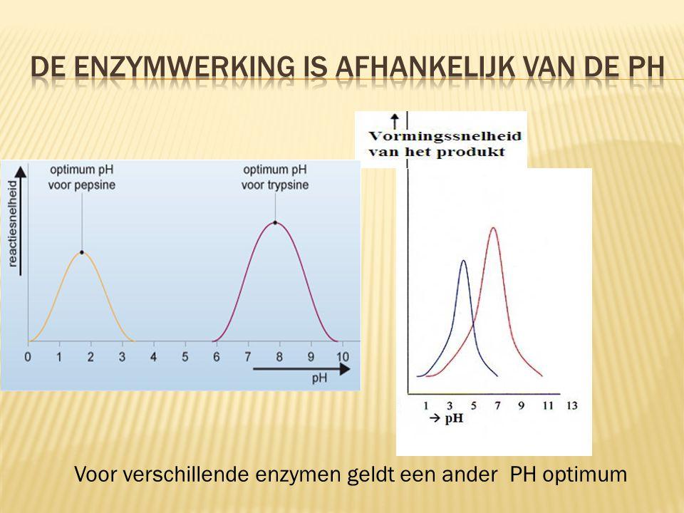 De enzymwerking is afhankelijk van de PH