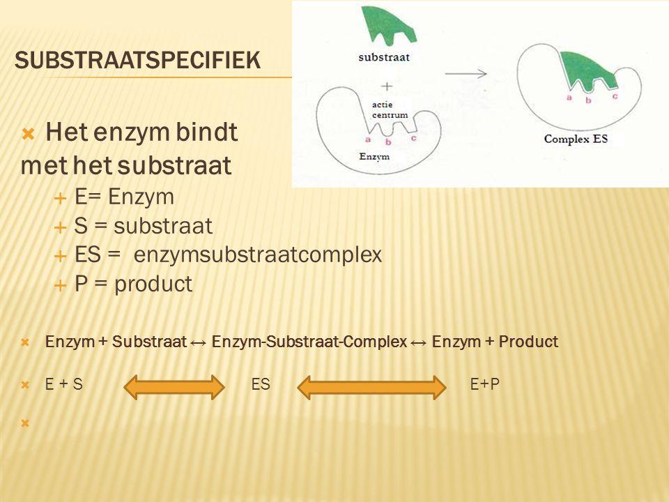Het enzym bindt met het substraat substraatspecifiek E= Enzym