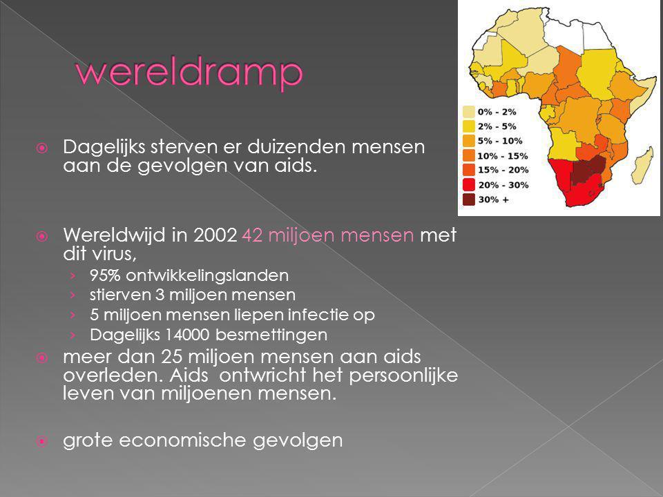 wereldramp Dagelijks sterven er duizenden mensen aan de gevolgen van aids. Wereldwijd in 2002 42 miljoen mensen met dit virus,