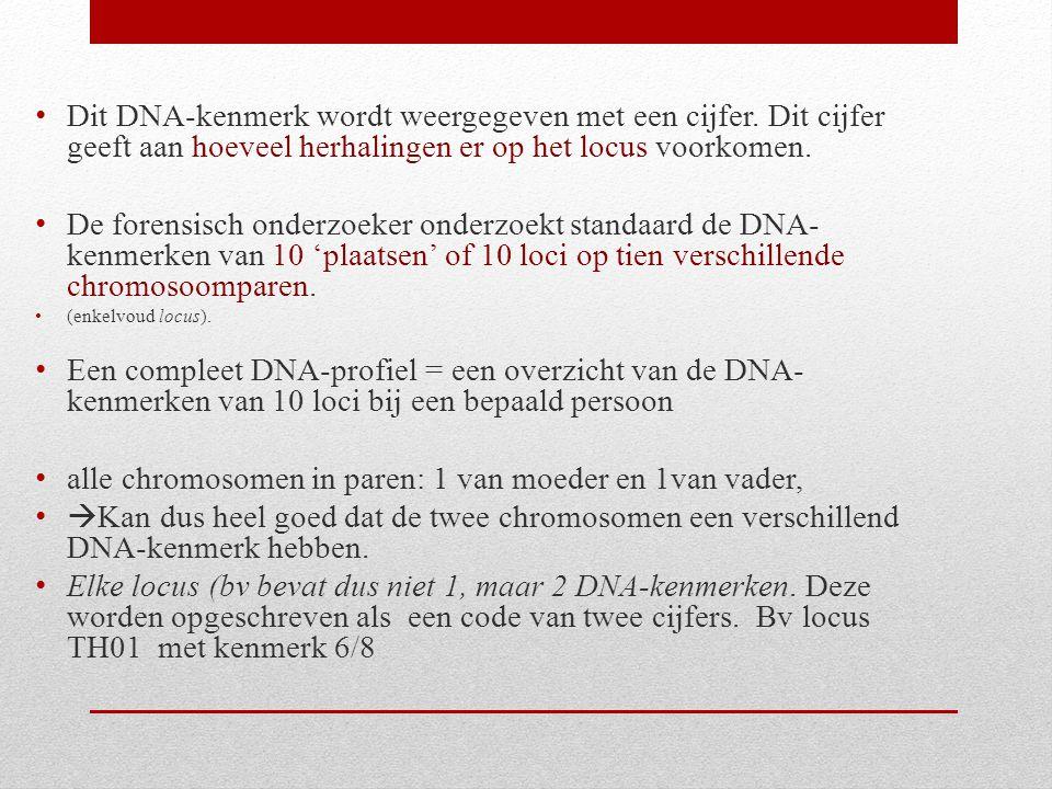 alle chromosomen in paren: 1 van moeder en 1van vader,