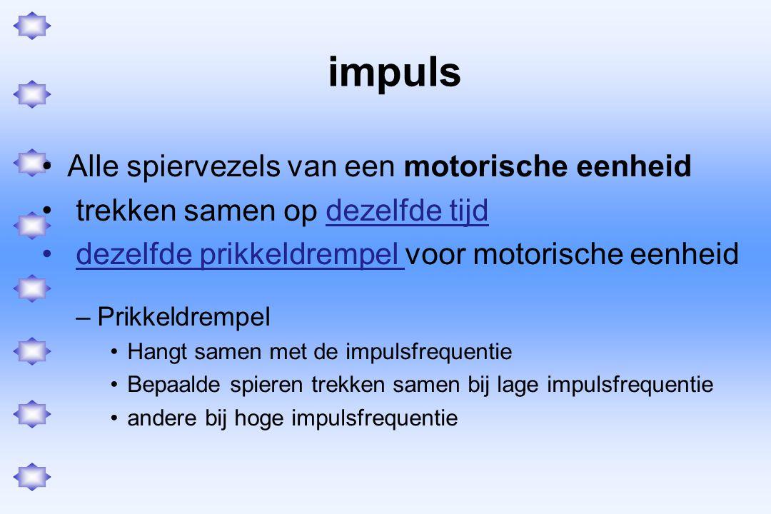 impuls Alle spiervezels van een motorische eenheid