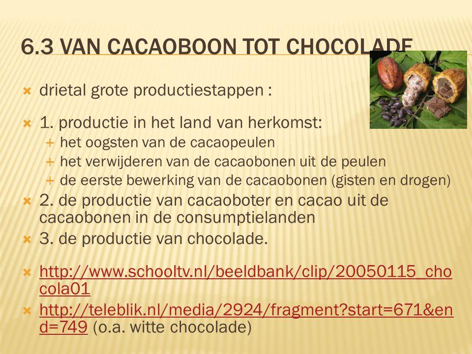 6.3 Van cacaoboon tot chocolade