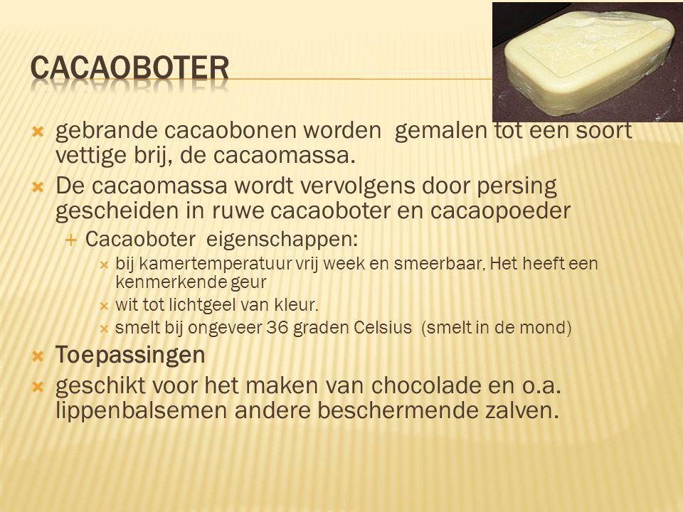 cacaoboter gebrande cacaobonen worden gemalen tot een soort vettige brij, de cacaomassa.