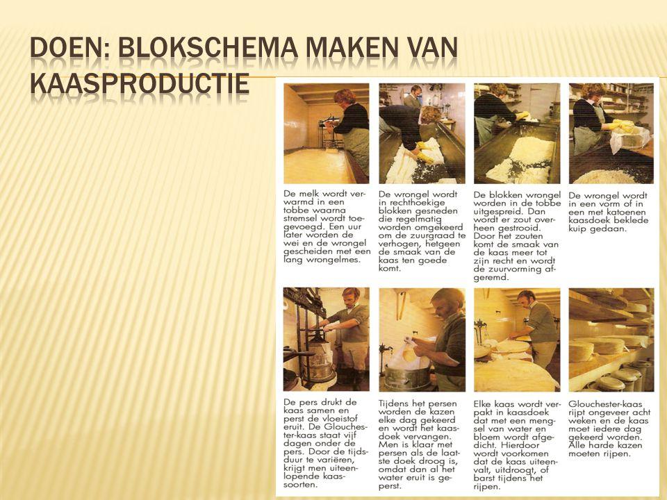 Doen: blokschema maken van kaasproductie