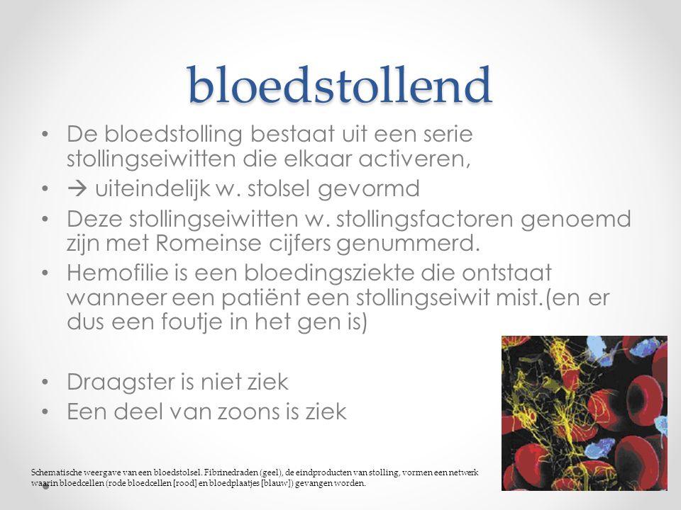 bloedstollend De bloedstolling bestaat uit een serie stollingseiwitten die elkaar activeren,  uiteindelijk w. stolsel gevormd.