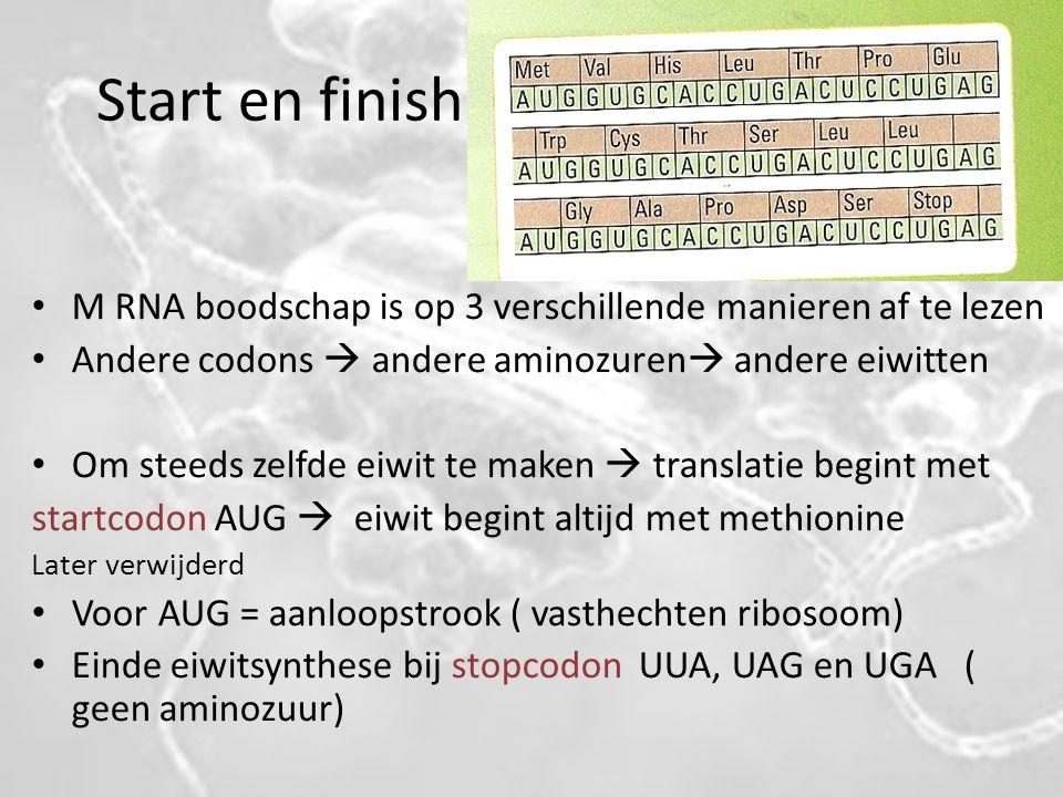Start en finish M RNA boodschap is op 3 verschillende manieren af te lezen. Andere codons  andere aminozuren andere eiwitten.