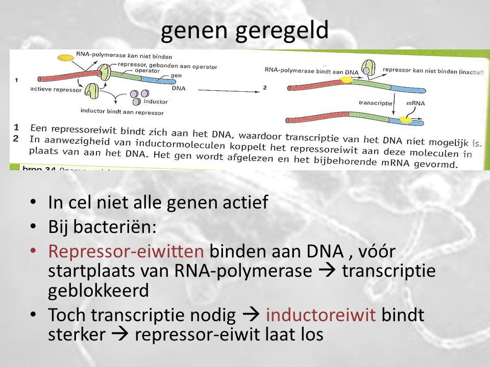 genen geregeld In cel niet alle genen actief Bij bacteriën: