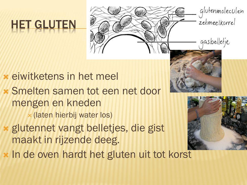 Het gluten eiwitketens in het meel