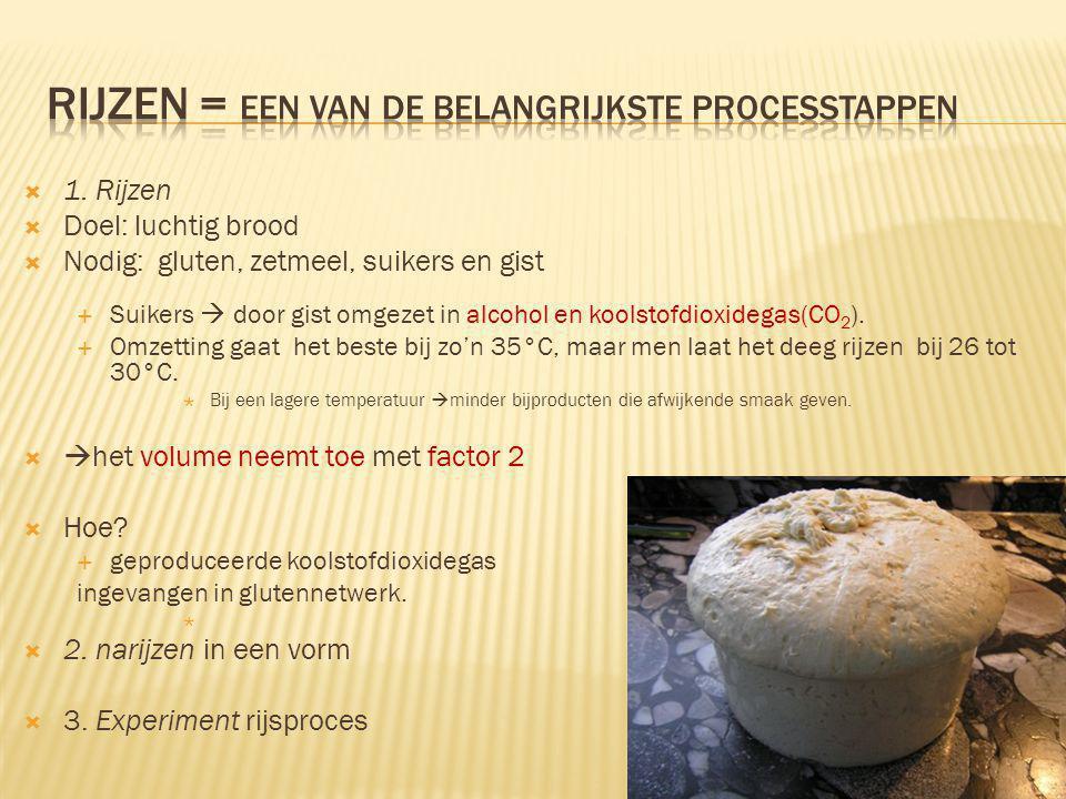 Rijzen = Een van de belangrijkste processtappen
