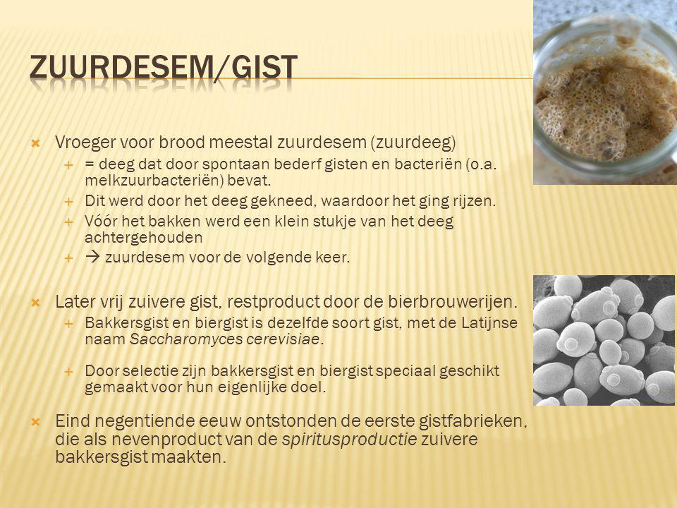 Zuurdesem/gist Vroeger voor brood meestal zuurdesem (zuurdeeg)