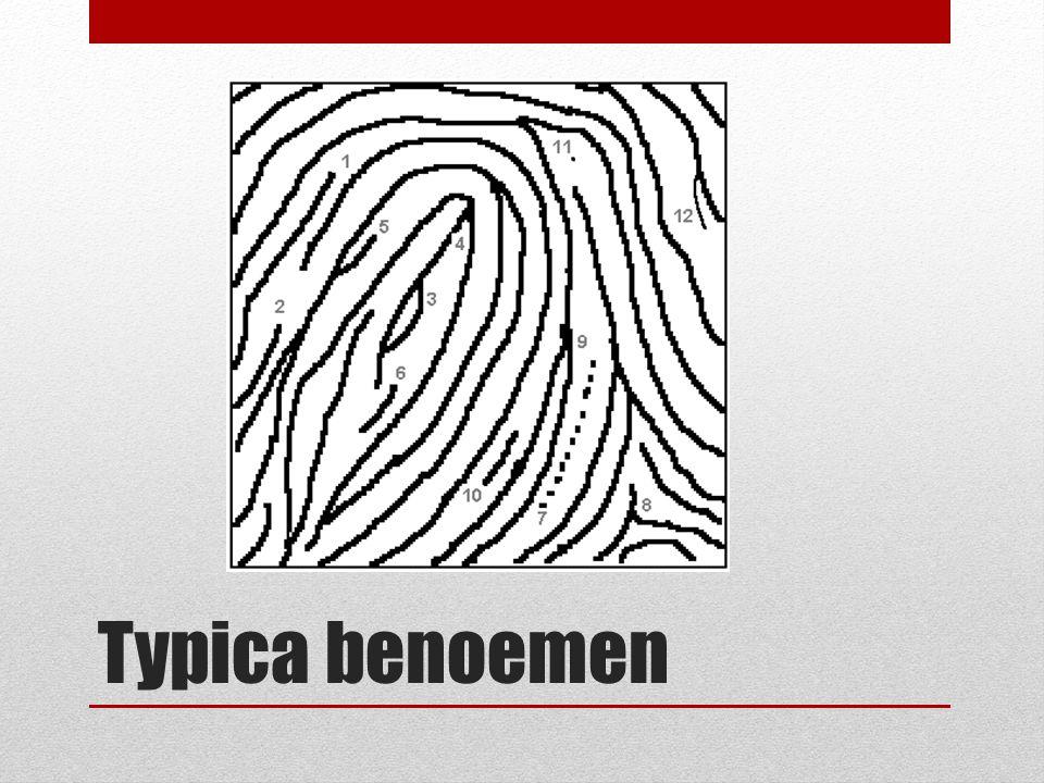 Typica benoemen