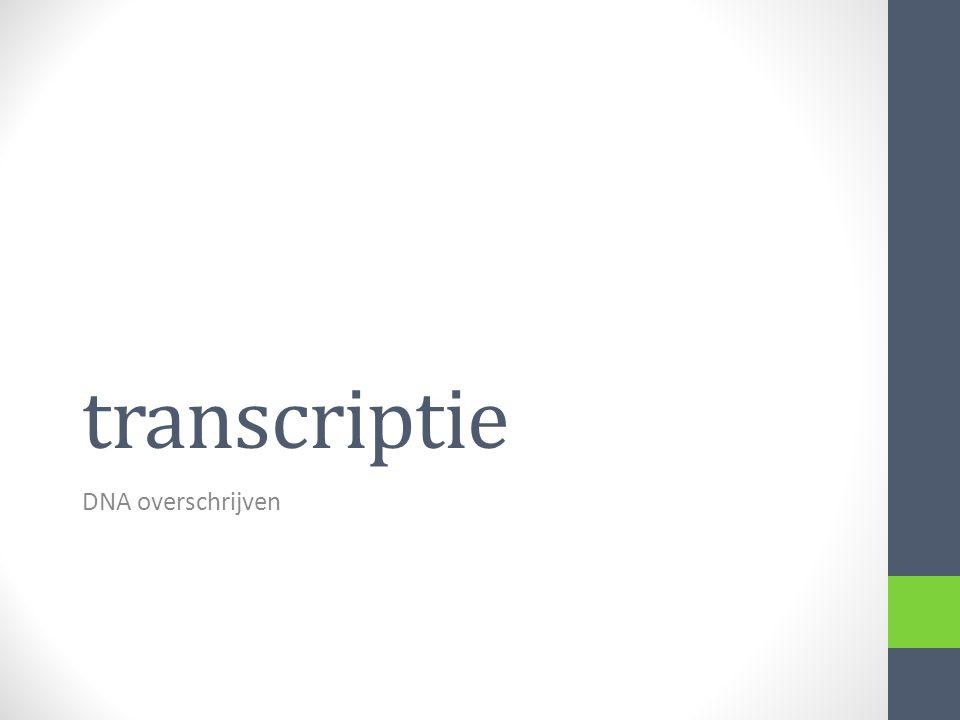 transcriptie DNA overschrijven