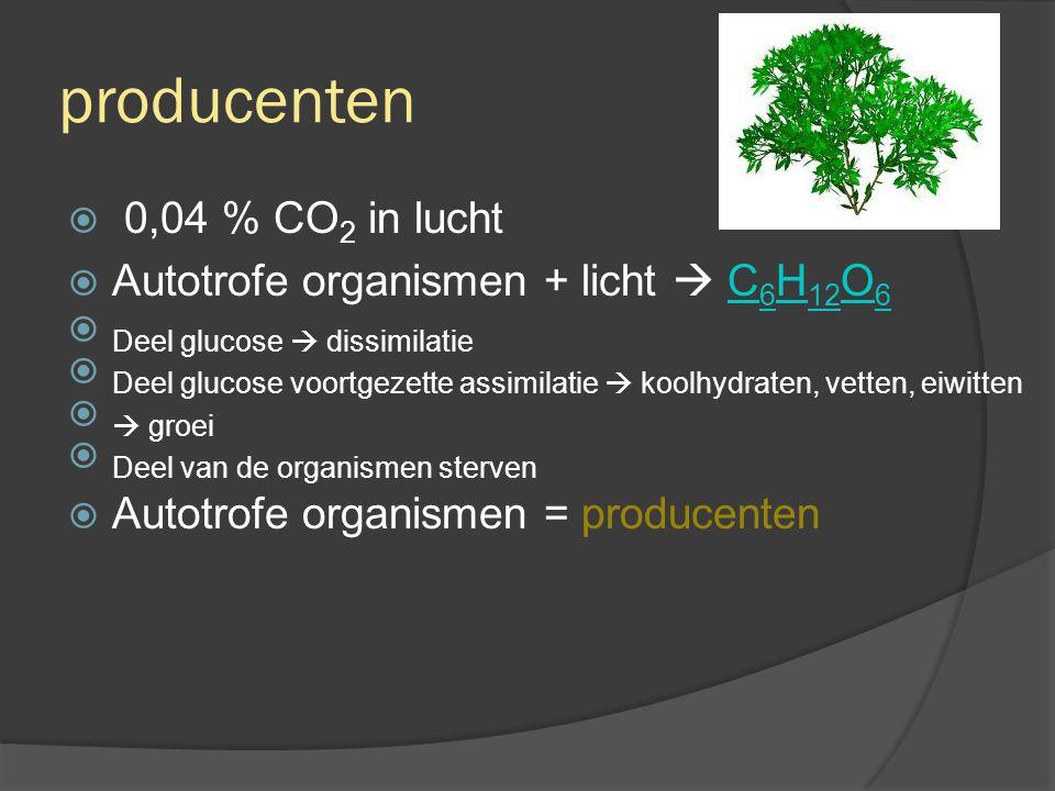 producenten 0,04 % CO2 in lucht Autotrofe organismen + licht  C6H12O6