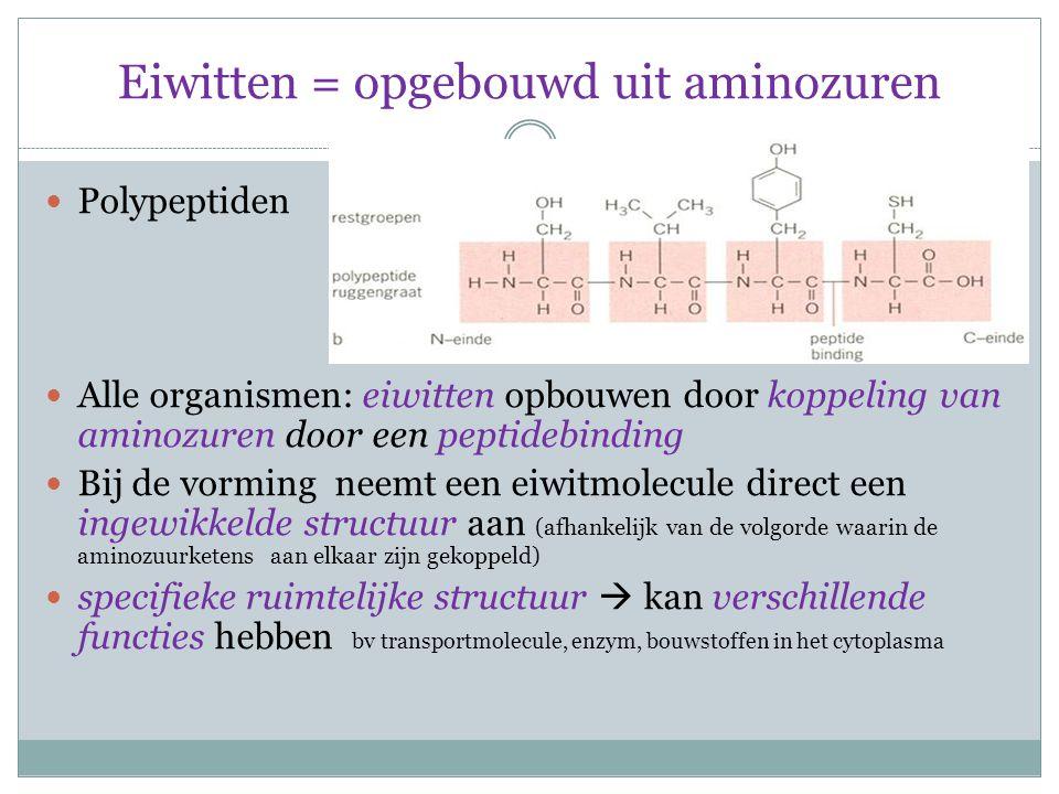 Eiwitten = opgebouwd uit aminozuren