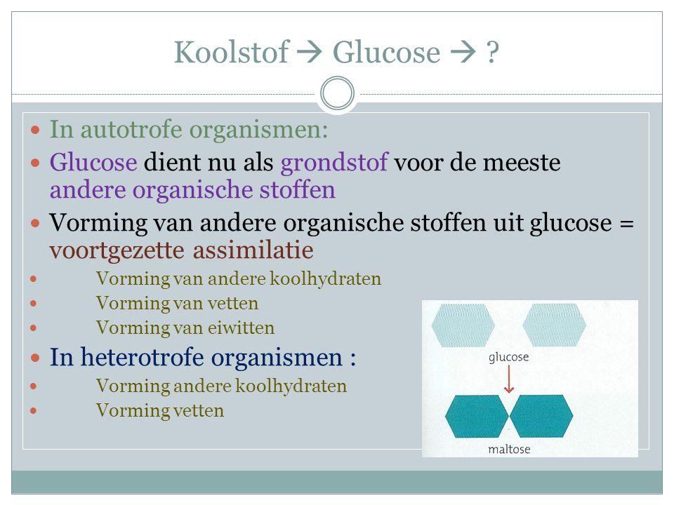 Koolstof  Glucose  In autotrofe organismen: