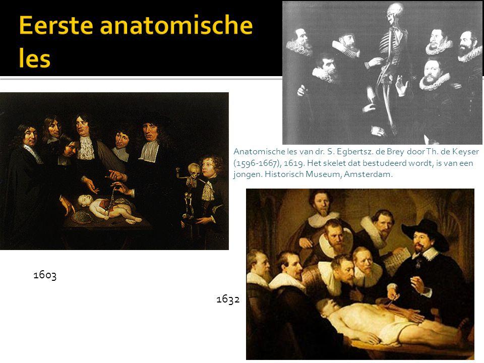 Eerste anatomische les