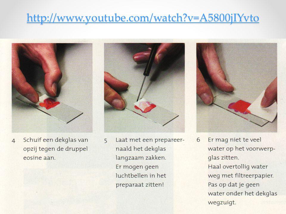 http://www.youtube.com/watch v=A5800jIYvto