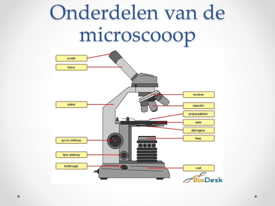 Onderdelen van de microscooop