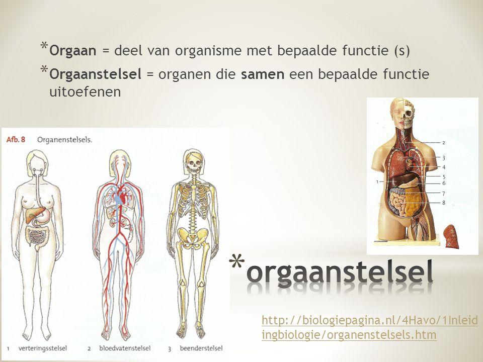 orgaanstelsel Orgaan = deel van organisme met bepaalde functie (s)