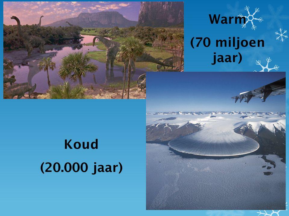 Warm (70 miljoen jaar) Koud (20.000 jaar)