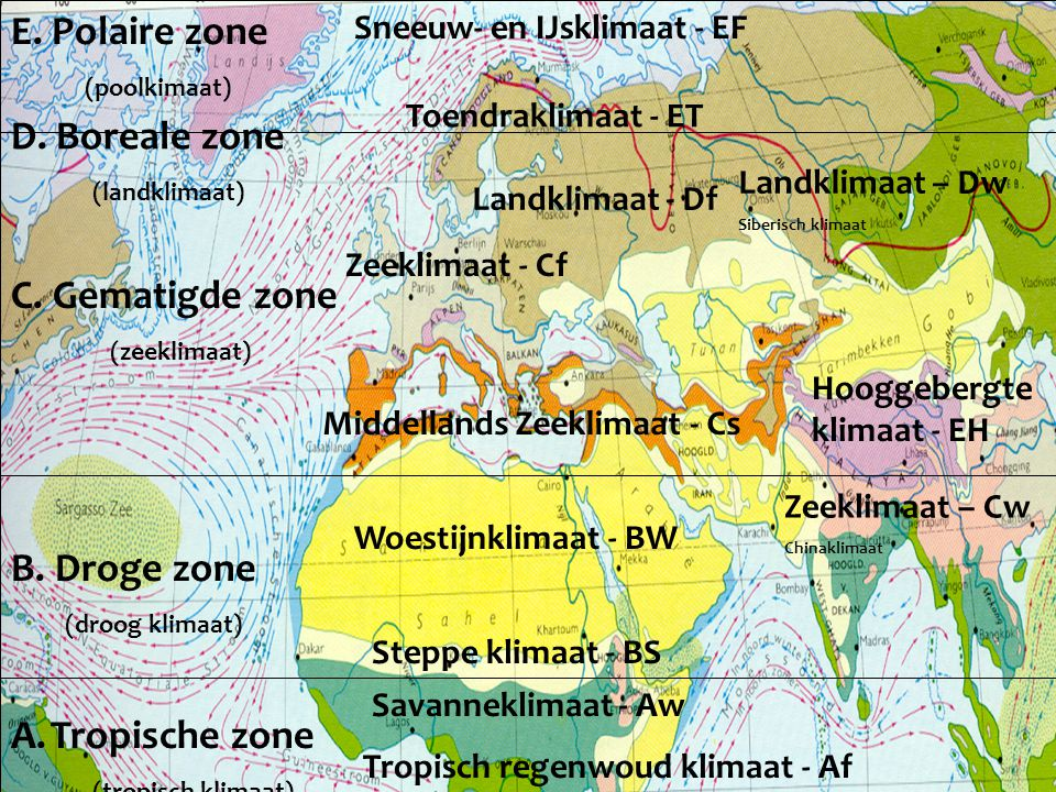 E. Polaire zone D. Boreale zone C. Gematigde zone B. Droge zone