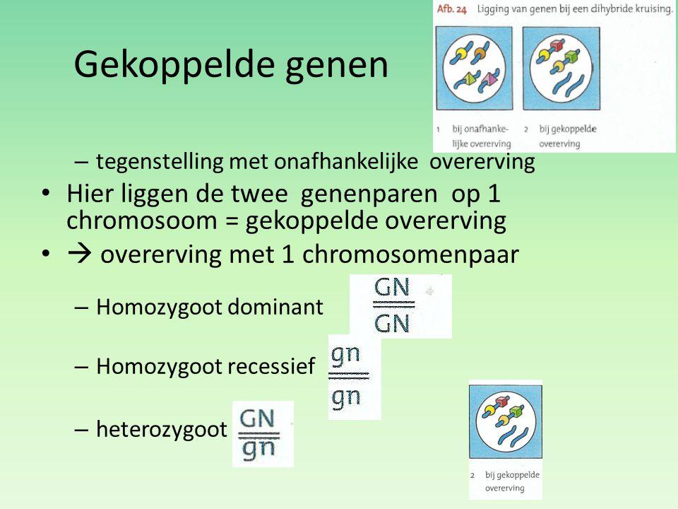 Gekoppelde genen tegenstelling met onafhankelijke overerving. Hier liggen de twee genenparen op 1 chromosoom = gekoppelde overerving.
