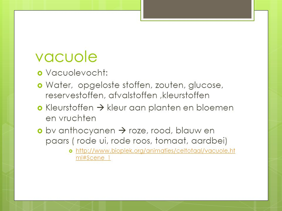 vacuole Vacuolevocht: