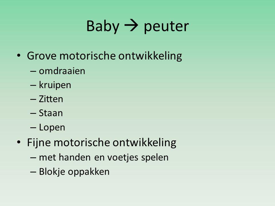 Baby  peuter Grove motorische ontwikkeling