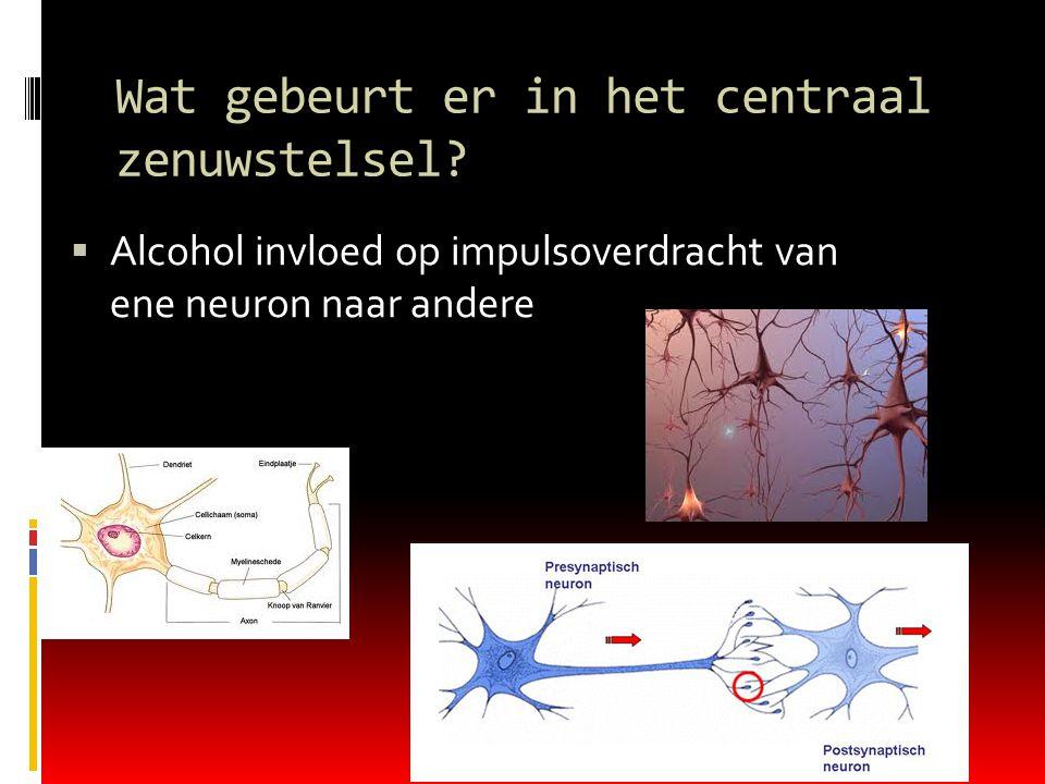 Wat gebeurt er in het centraal zenuwstelsel