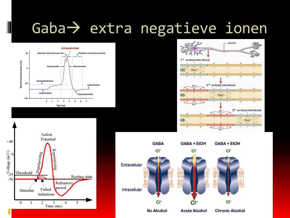 Gaba extra negatieve ionen
