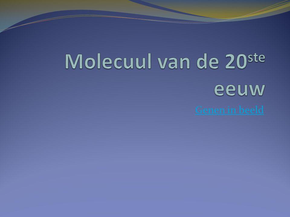 Molecuul van de 20ste eeuw
