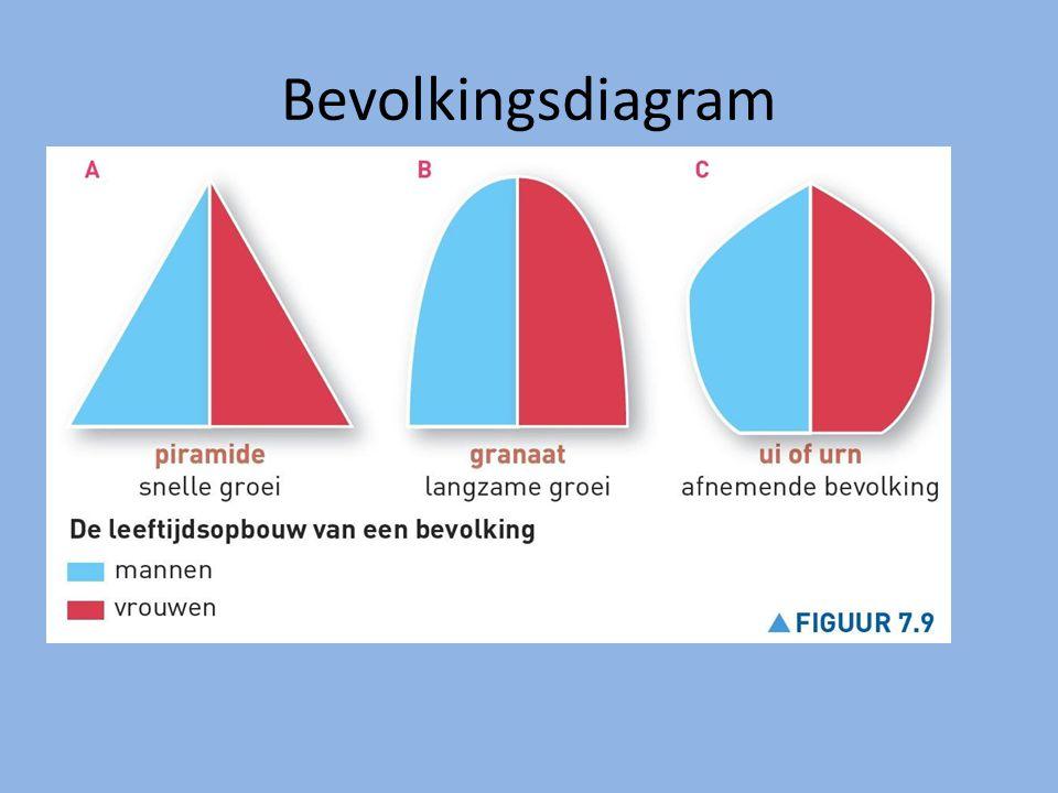 Bevolkingsdiagram