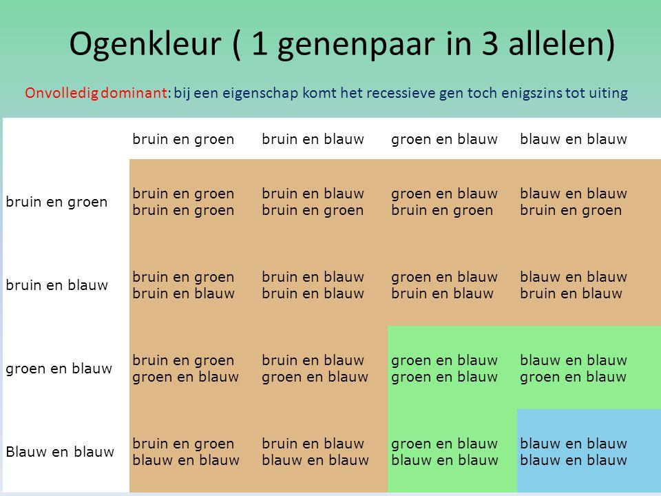 Ogenkleur ( 1 genenpaar in 3 allelen)