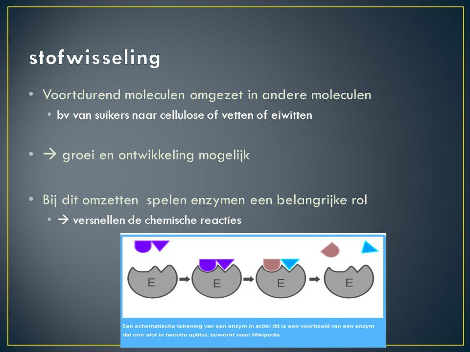stofwisseling Voortdurend moleculen omgezet in andere moleculen