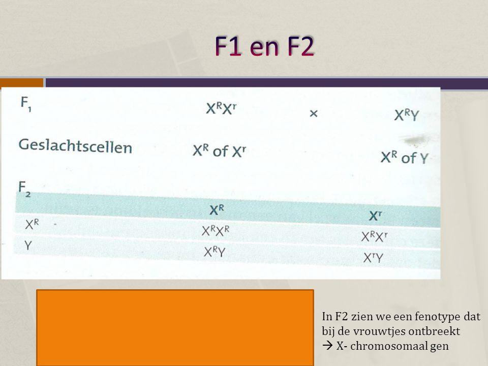 F1 en F2 In F2 zien we een fenotype dat bij de vrouwtjes ontbreekt