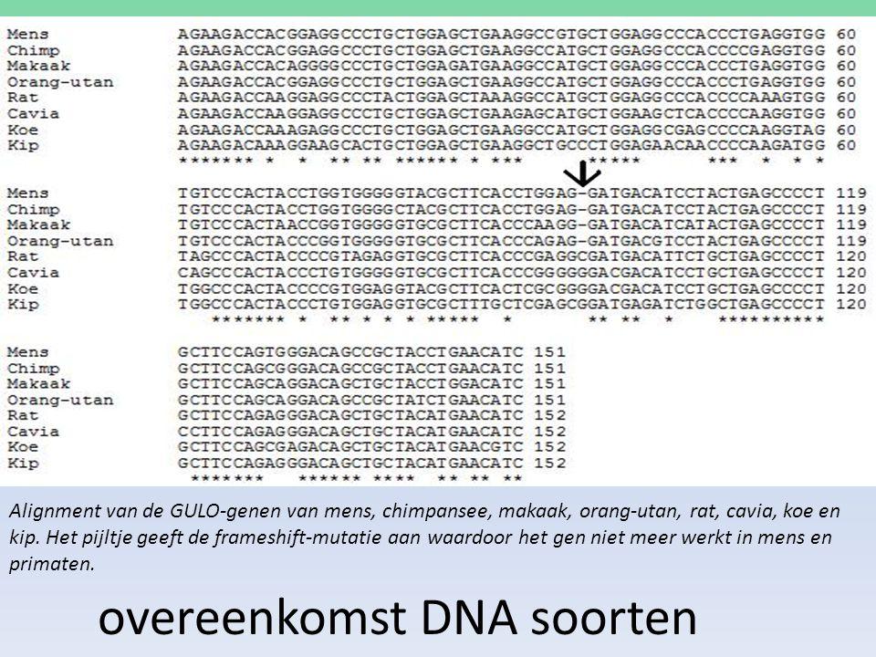 overeenkomst DNA soorten