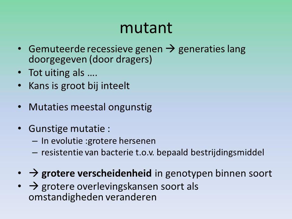 mutant Gemuteerde recessieve genen  generaties lang doorgegeven (door dragers) Tot uiting als …. Kans is groot bij inteelt.