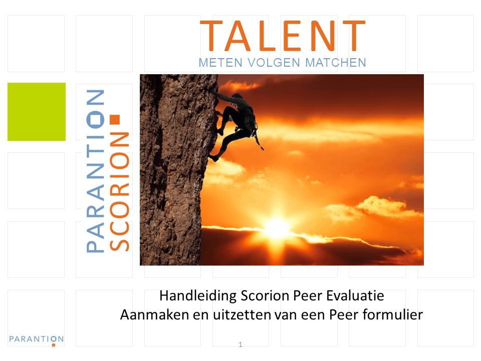 TALENT SCORION Handleiding Scorion Peer Evaluatie