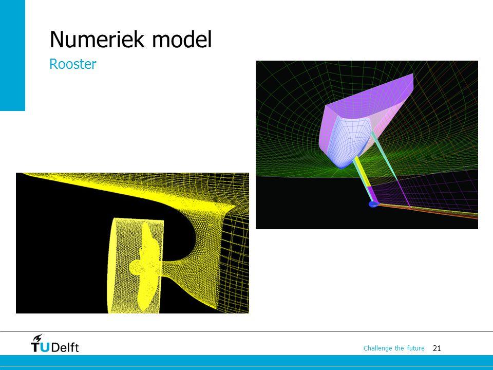 Numeriek model Rooster