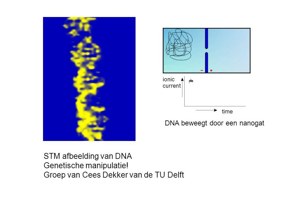 Genetische manipulatie! Groep van Cees Dekker van de TU Delft