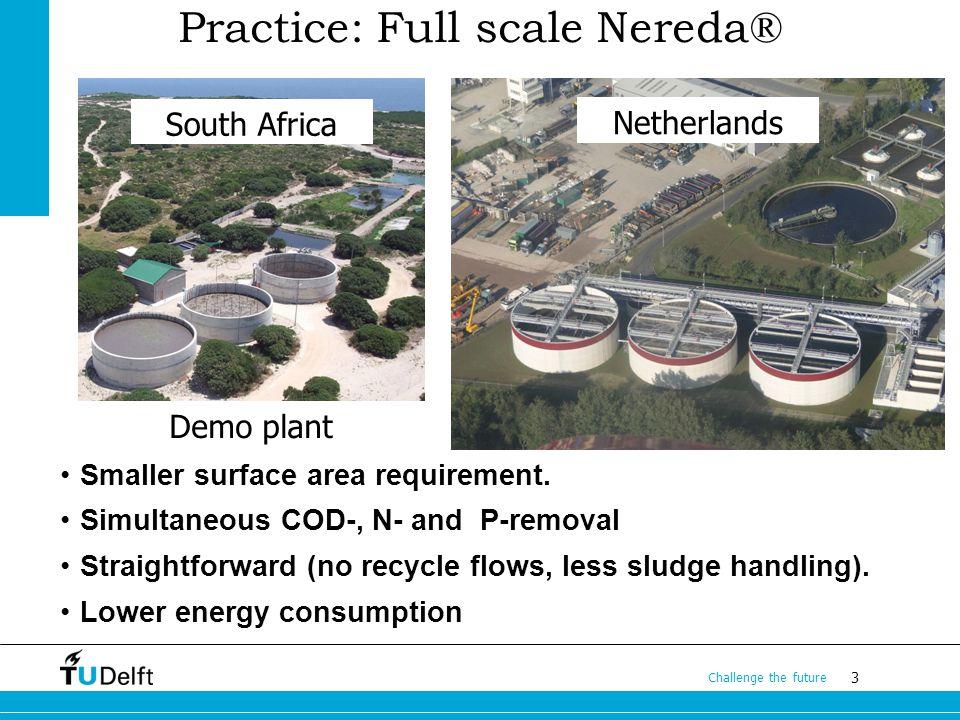 Practice: Full scale Nereda®