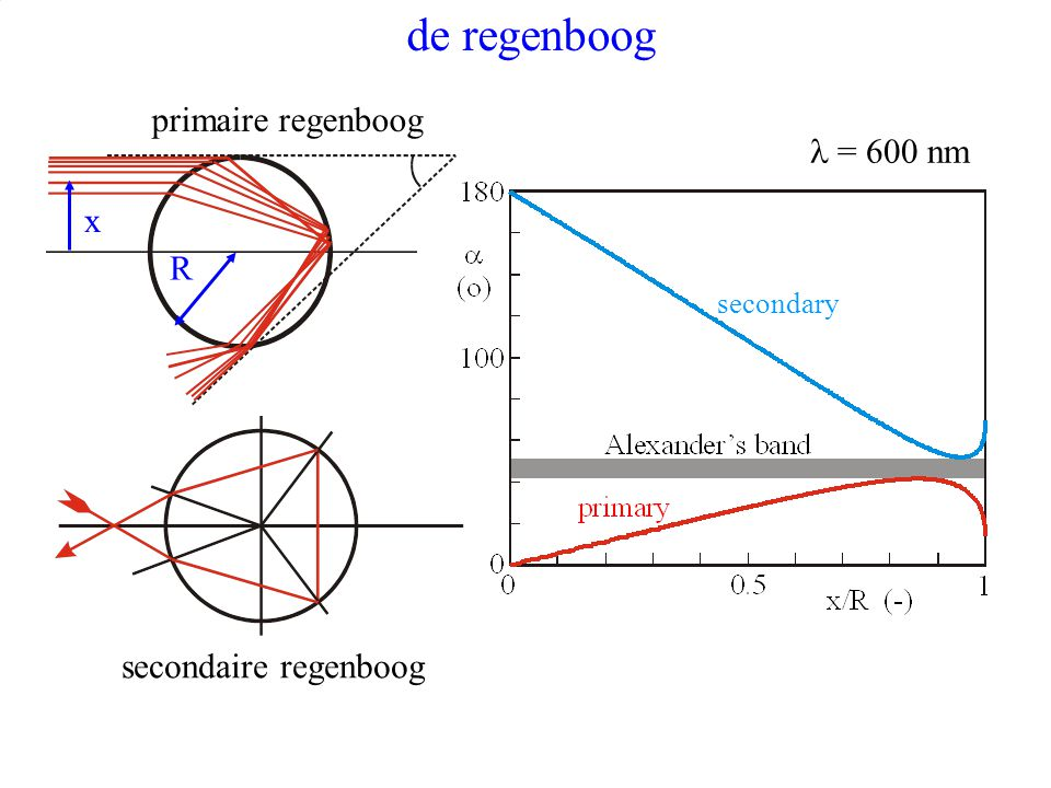 de regenboog primaire regenboog l = 600 nm x R secondaire regenboog