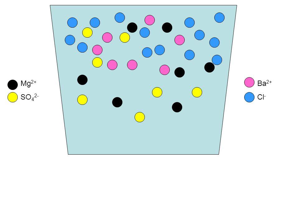 Mg2+ SO42- Ba2+ Cl-
