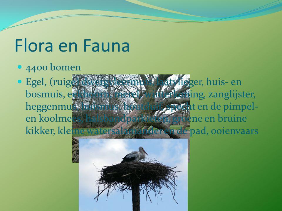 Flora en Fauna 4400 bomen.